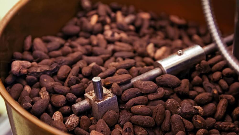 Jak powstaje czekolada? Poznaj proces produkcji czekolady!